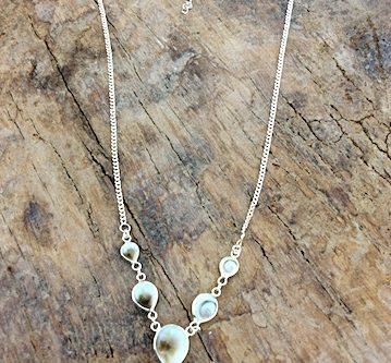 Halskette mit weiß-braunen Shiva-Muscheln in Silberfassung