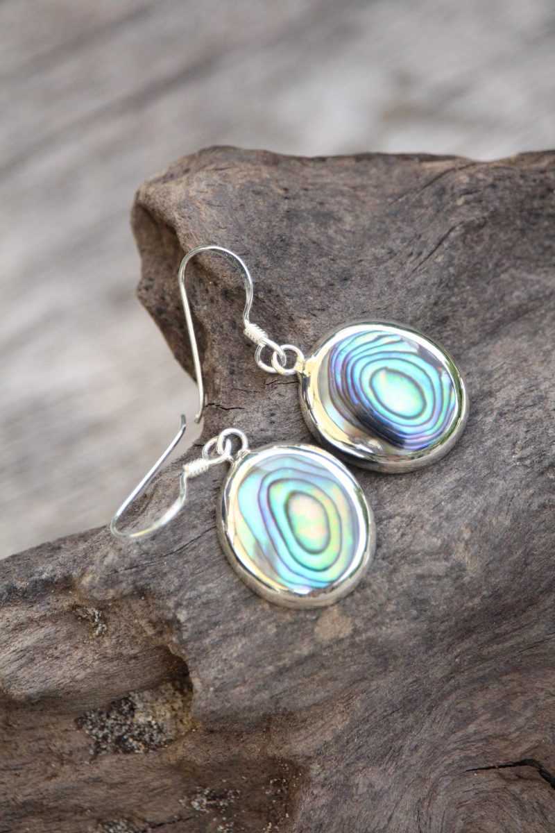 9-4006-2 Ohrringe abalony rund